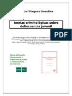 9. Teorías Criminológicas sobre la Delincuencia Juvenil.pdf