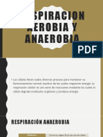 RESPIRACION AEROBIA Y ANAEROBIA