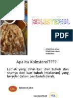 182777611 Penyuluhan Kolesterol Ppt