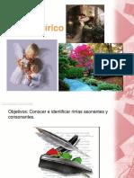 """2.-ppt Lenguaje 5º básico """"Rimas asonante y consonante"""