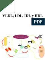 VLDL,LDL,IDL,HDL