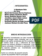 Historia de los Invertebrados.pptx