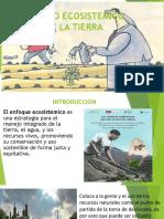 MANEJO ECOSISTEMICO DE LA TIERRA.pptx