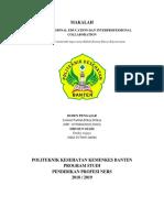 Interprofessional Education Dan Interprofessional Collaboration