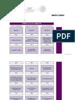 01a Mapa Cuatrimestral Ing Biotecnología UUPP 14jul2017(1)