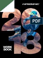 2058735 Haibike 2018 Workbook.pdf