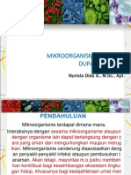 2. PERAN MIKROORGANISME PADA KEHIDUPAN MANUSIA.pptx