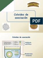 Coloides2 2018 segunda parte.pdf