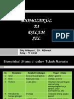 1. BM1-Preentasi Biomolekul Di Dalam Sel