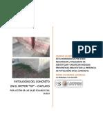 Monografía, Calidad del concreto, presencia de patologías en el concreto, problemas con los sulfatos en lambayeque.