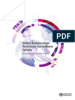 Global AMB Resistance - manual.pdf
