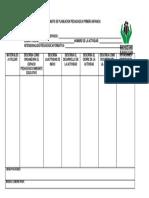 formato de planeacion pedagogica primerainfancia-170803094925.docx