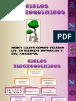 ciclos biogeoquimicos 2.pptx