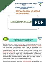 4.-Proceso de Restauracion