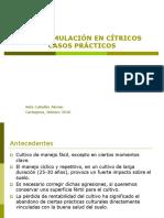 Bioestimulación en Cítricos Casos Prácticos