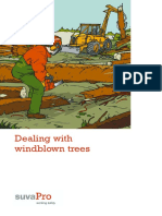 Dealing With Windblown Trees