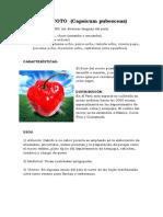 145926982-EL-ROCOTO (3).docx