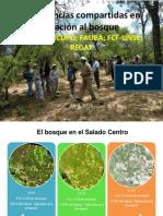 Investigación en Manejo forestal comunitario en Santiago del Estero, Argentina