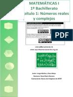 BC1 01 Complejos.pdf