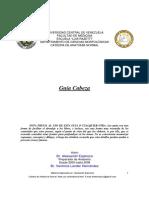 Guía de Cabeza.pdf