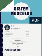 Sistem musculus.pptx