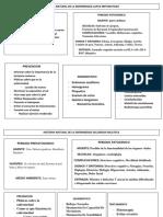 340777354-Historia-Natural-de-La-Enfermedad.docx