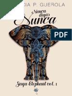 01- Nunca Digas Nunca- Saga Elephan - Patricia P. Guerola