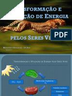 transformacaoeutilizacaodeenergiapelosseresvivos.pptx
