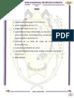 monografico 1.docx