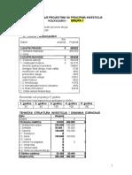 Upravljanje-projektima-i-investicijama (1).doc