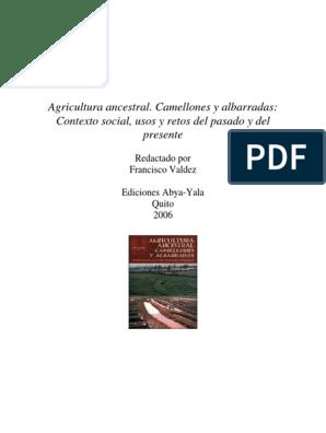 Erickson C 2006 Camellones Y Su Valor Bol Peru Pdf
