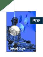 163024943-O-DESPERTAR-DA-VISAO-INTERIOR-SAMUEL-SAGAN.pdf