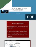 Synaptic & Junctional Transmission