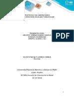 Protocolo de Práctica Para Laboratorio Presencial Del Curso Biología Celular y Molecular.