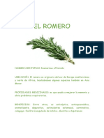 EL ROMERO.doc