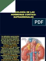 Fisiología de Los Corticoides Suprarrenales (1)