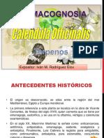 Calendula Officinalis Ivan M.R. Elox
