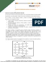 Conceptos basicos de preparacion.docx