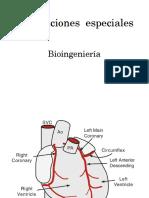 Circulaciones_especiales.pdf