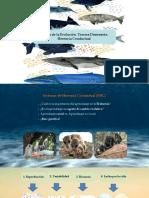 Teoría de la evolución Conductual parte 1; 22 de nov 2017.pdf
