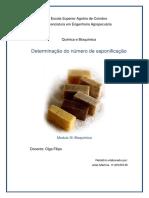 Relatório Bioquimica(Saponização)
