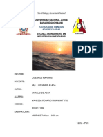 Informe 1 Oceanos Marinos