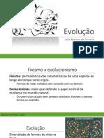 Aula - evolução humana