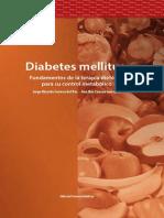 diabetes_completo.pdf