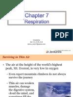 Bab 7 Respiration