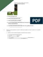 Selecciona y Planifica La Producción de Un Texto Descriptivo Sobre Un Tema