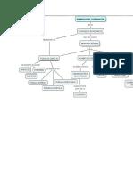 Mapa Conceptual Nomenclatura