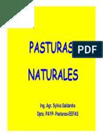 26 - Pasturas Naturales.pdf