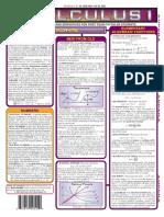 Basics of Calculus.pdf