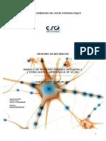 Reseaux de Neurones Formels Appliques A